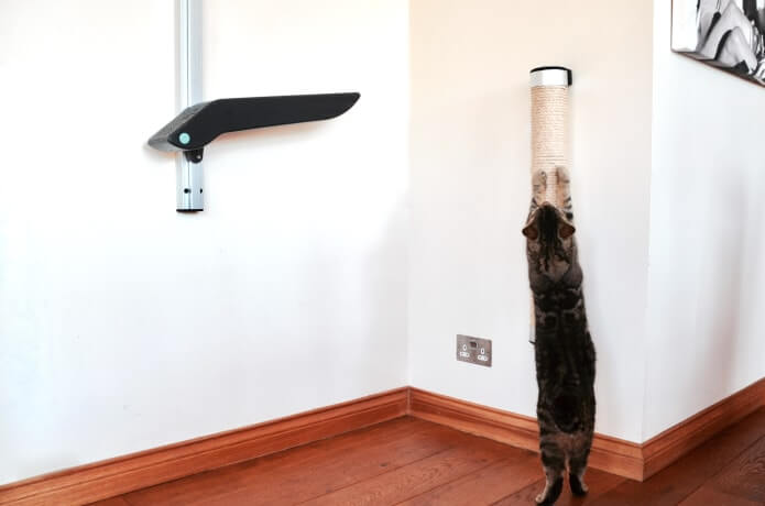 wall mounted cat scratcer product design