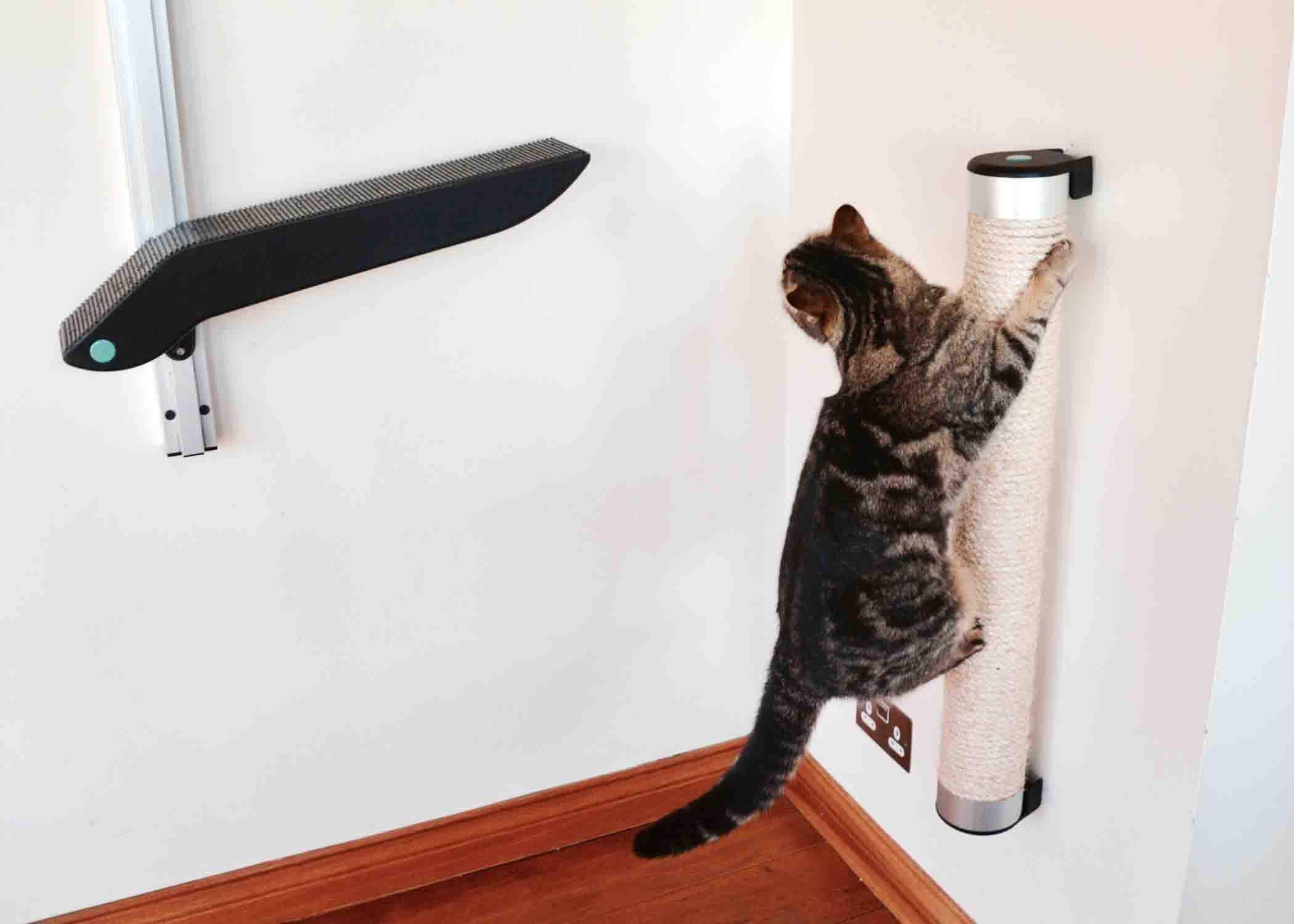 Catipilla cat climbing product and scratcher