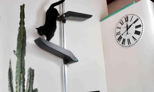 Catipilla cat climbing product